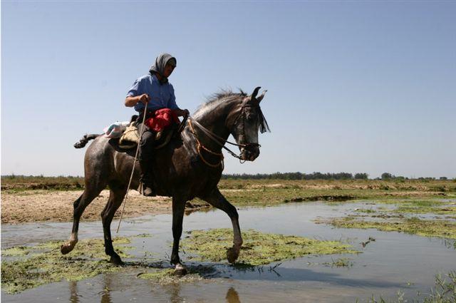 Cabalgando por Doñana