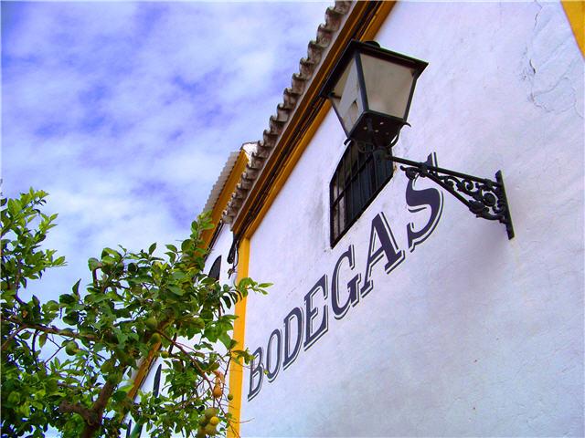 Enoturismo en el Condado de Huelva